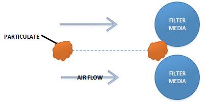 filtration mechanism: straining